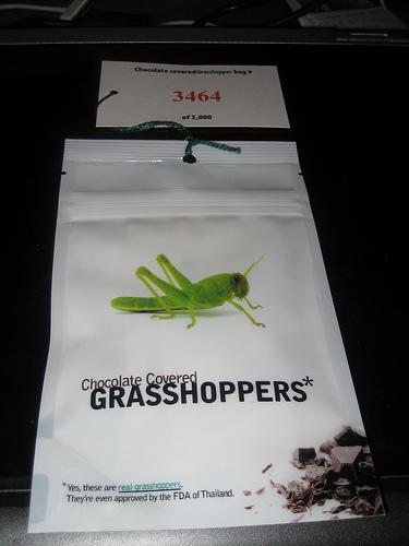 Café_Grassohopper